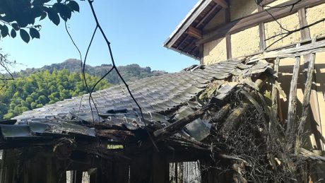 屋根が落ちています、、、。